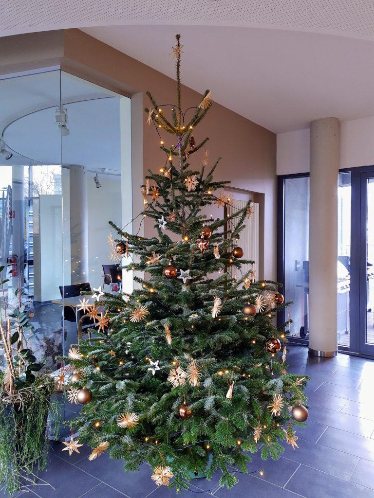 Weihnachtsbaum im TZK. Adventszeit 2019.